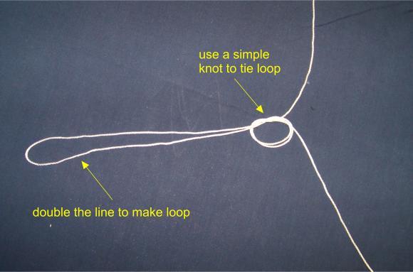 trotline loop