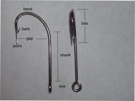 hook anatomy